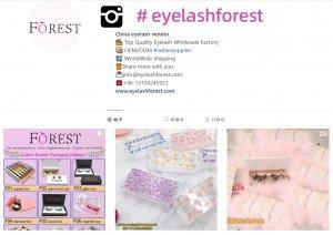 eyelashforest instagram